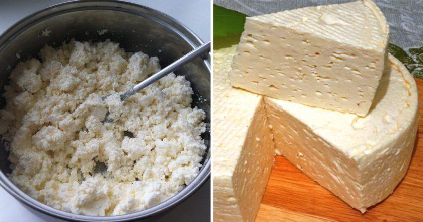 Французький сир в домашніх умовах подивитися рецепт