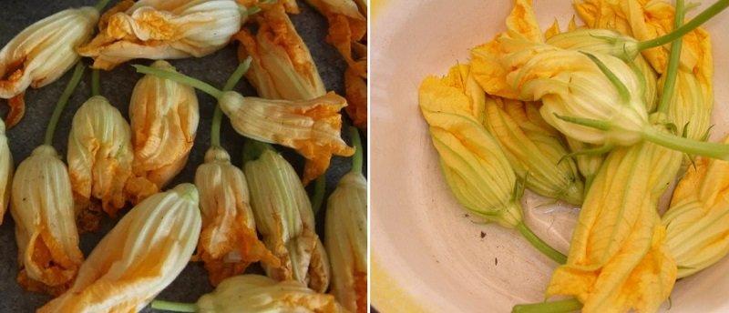Квітки кабачків в клярі