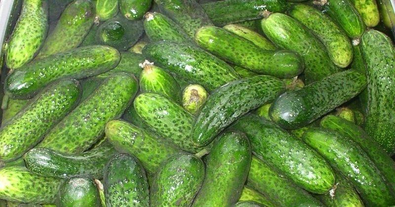 Огірки у власному соці