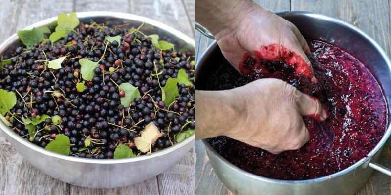Зріле вино з смородини